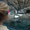 2012 05 25 Zoo-10
