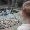 2012 05 25 Zoo-3