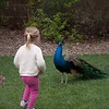 2012 05 25 Zoo-25
