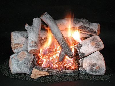 C8 Dual Burner-BIRCH