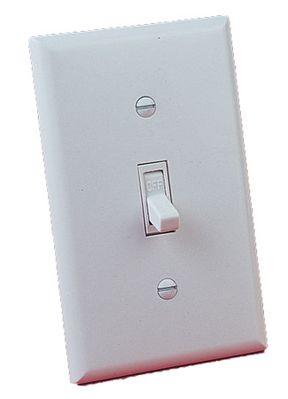 WS-1 Wall Switch with 20-feet wire, for millivolt and 24volt EIS