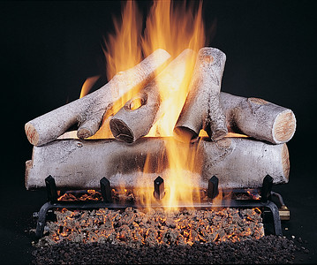 Birch logs on FX burner and grate