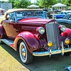 Gasparilla Concours d'Elegance Cars in the Park - April 12, 2019 - Chuck Carroll