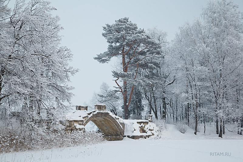 Гатчина - Горбатый мостик зимой / Gatchina - Humpback bridge in winter
