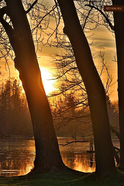 В Гатчинском парке - закат на Белом озере