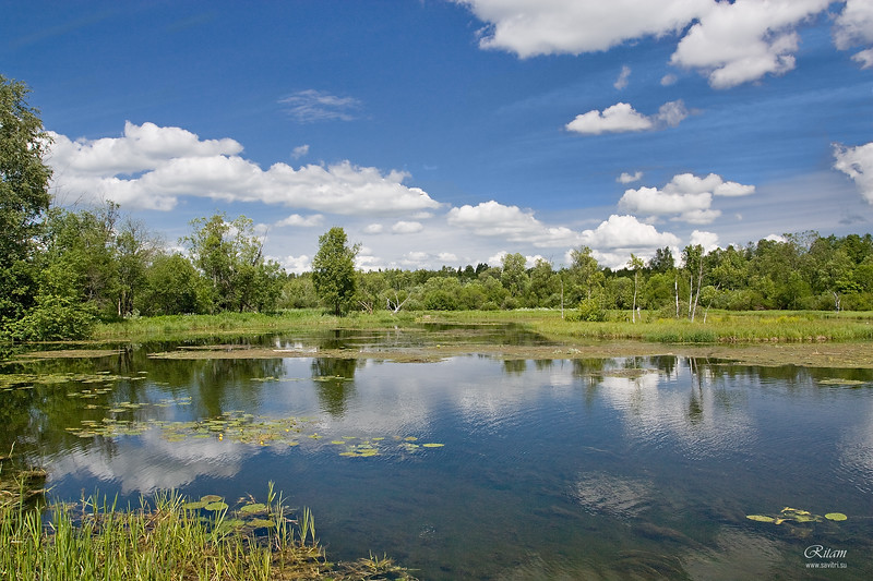 Tyoplaya River / Река Теплая