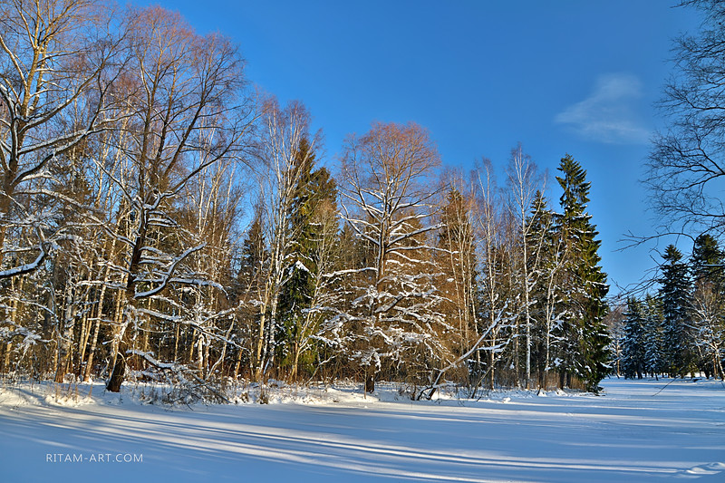 Gatchina Park today / Гатчинский парк сегодня