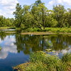 Gatchina Park - Tyoplaya River. Summer / Гатчинский парк - река Теплая. Лето