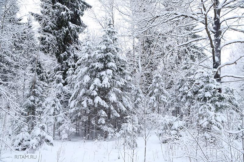 Царство Зимы / The Kingdom of Winter