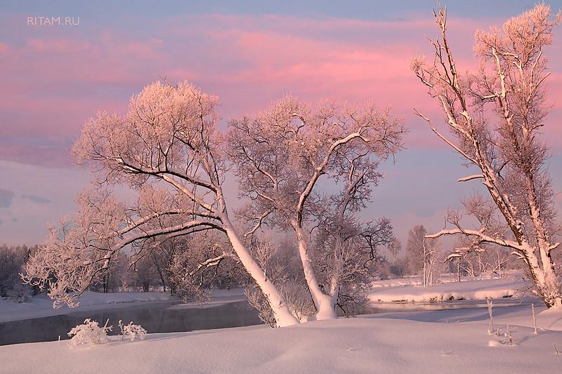 Гатчина - зимняя нежность