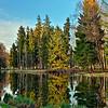 Гатчинский парк - острова Белого озера