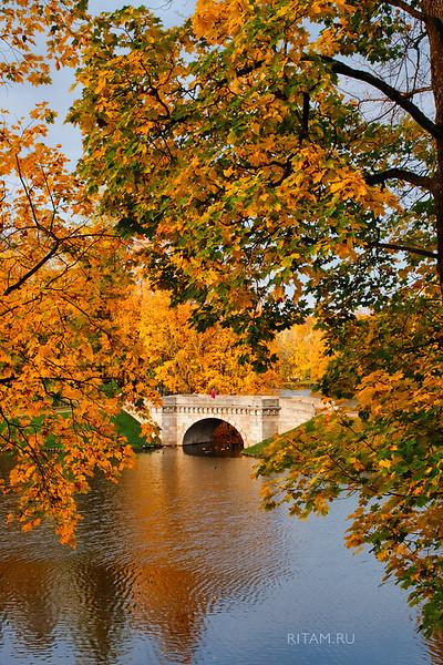 Гатчинская осень