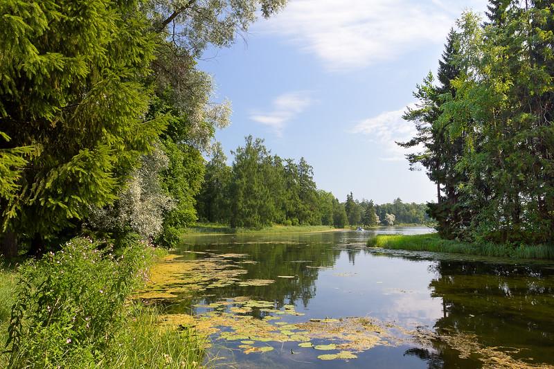Gatchina Park - Summer Moment / Гатчинский парк - мгновение лета