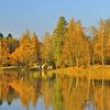 Гатчинский парк - вид на Горбатый мостик на Белом озере