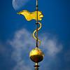Золотая змейка Приората: созерцание Луны