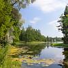 Гатчинское лето - вид на Белое озеро и его сотрова