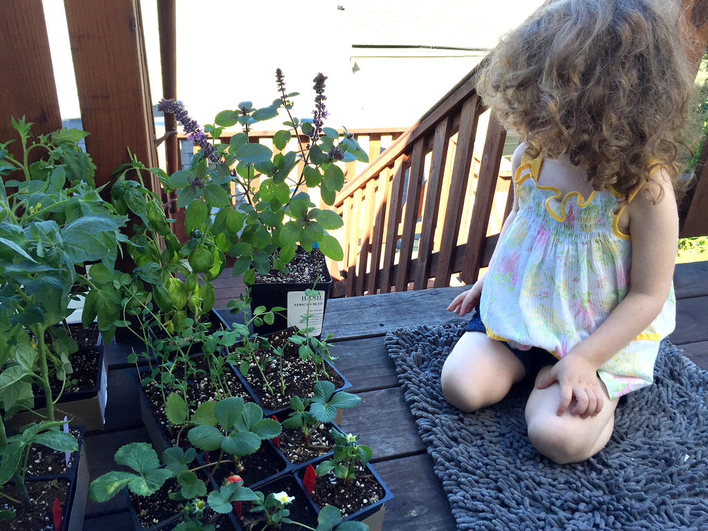 Gates Looks at Her Plants