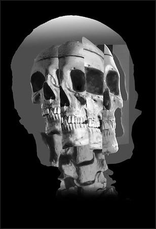 CA~Cubist-Skull~242