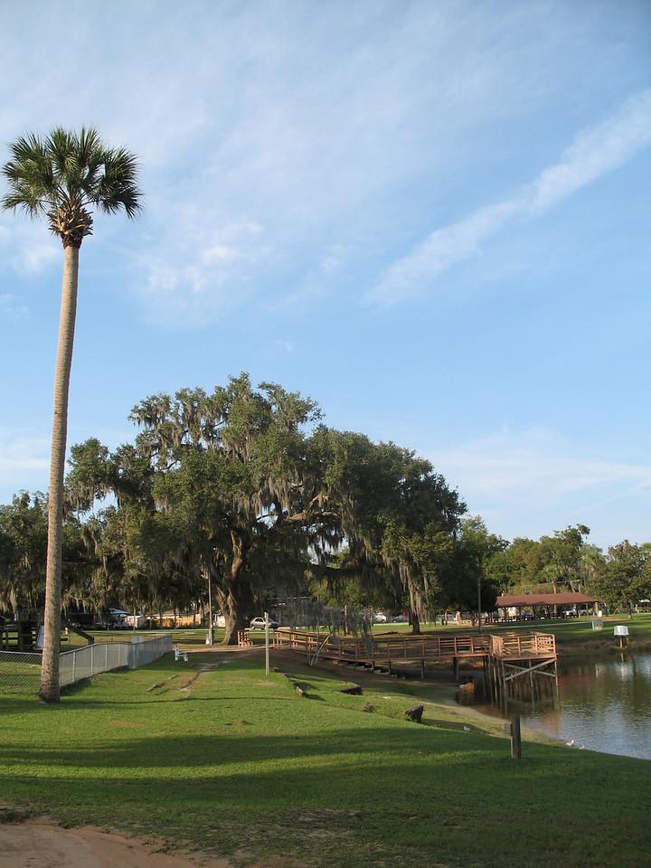 Lake Lillian, downtown Belleview<br /> PHOTO CREDIT: Florida Trail Association / Sandra Friend