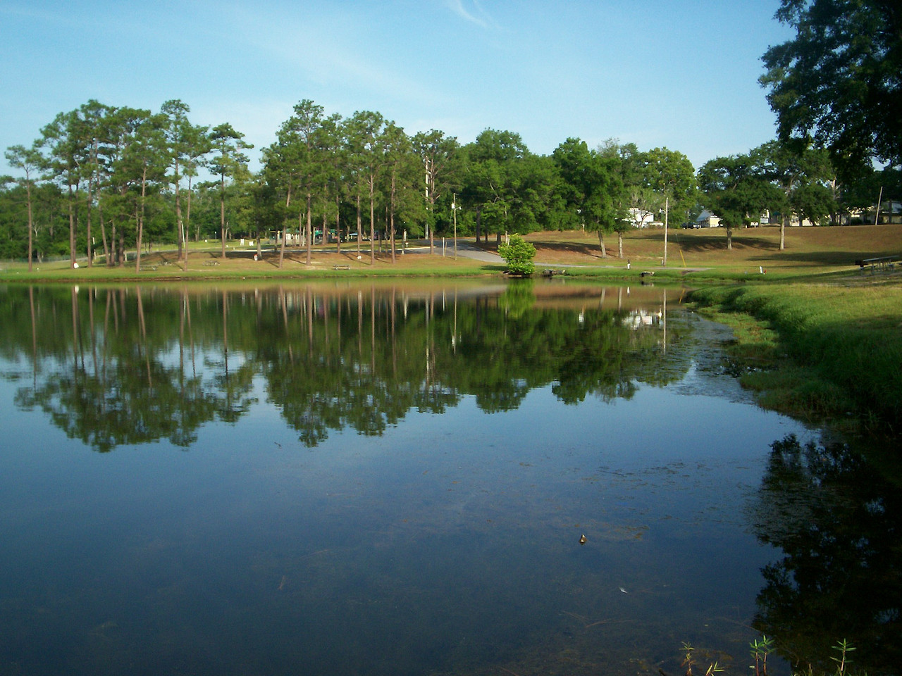 Twin Hills Park<br /> PHOTO CREDIT: Wallis Mayo / Florida Trail Association