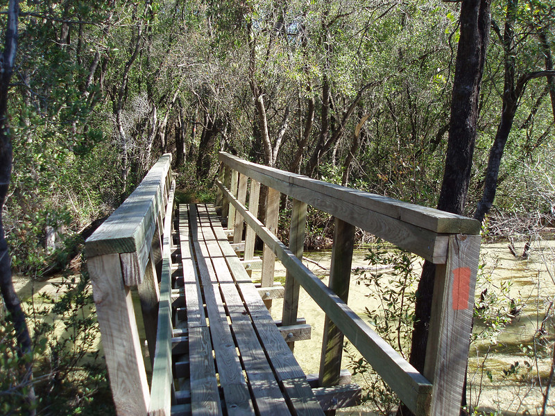 Florida Trail bridge crossing, Eglin AFB<br /> PHOTO CREDIT: Robert Coveney / Florida Trail Association