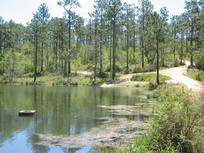 Buck Pond