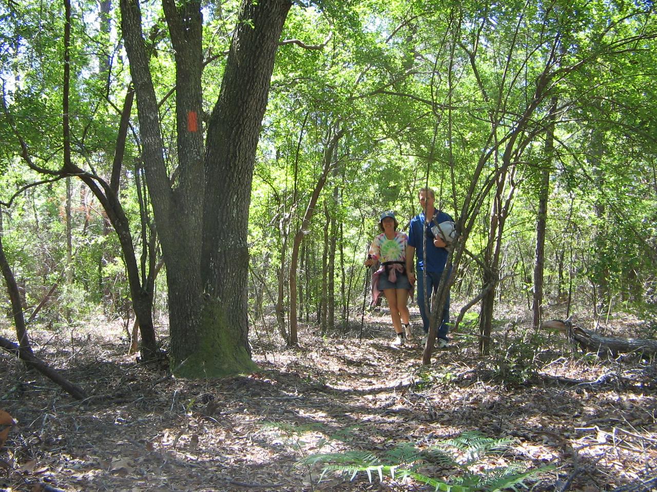 Weaver Creek Trail
