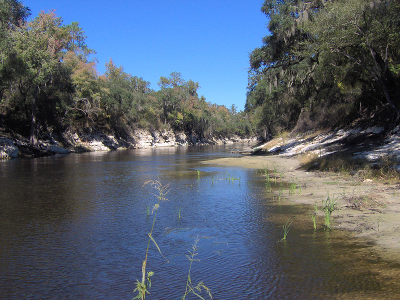 The Suwannee River near White Springs<br /> PHOTO CREDIT: Bruce Lyon / Florida Trail Association
