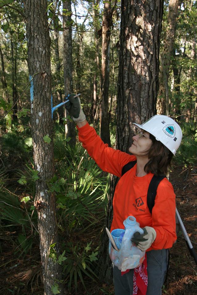 Maintaining the Florida Trail<br /> PHOTO CREDIT: Bob Stone / Florida Trail Association