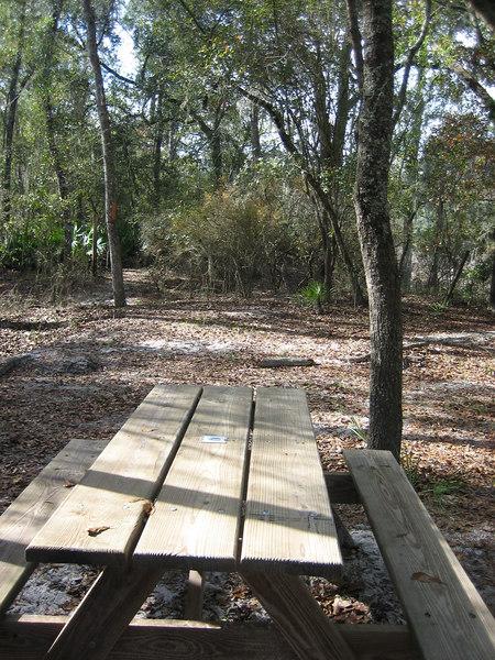 Picnic stop near Little Shoals<br /> PHOTO CREDIT: Sandra Friend / Florida Trail Association