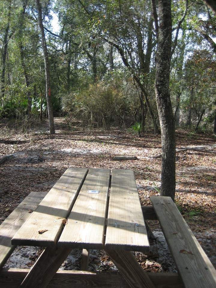Picnic stop near Little Shoals<br /> PHOTO CREDIT: Sandra Friend / Florida Trail Association