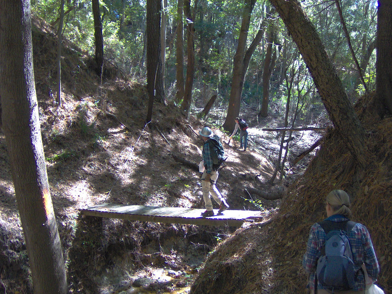 Trail workers maintaining a rugged section of the Florida Trail near White Springs<br /> PHOTO CREDIT: Bruce Lyon / Florida Trail Association