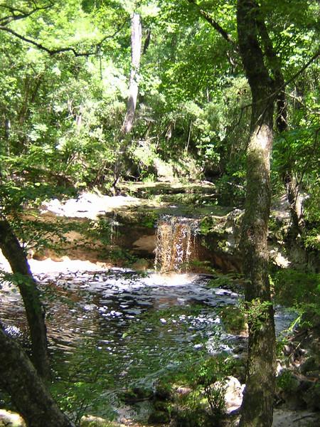 Falling Creek Falls<br /> PHOTO CREDIT: Sandra Friend / Florida Trail Association