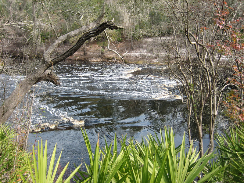 Little Shoals<br /> PHOTO CREDIT: Sandra Friend / Florida Trail Association