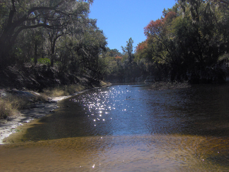 The Suwannee River near Camp Branch<br /> PHOTO CREDIT: Bruce Lyon / Florida Trail Association