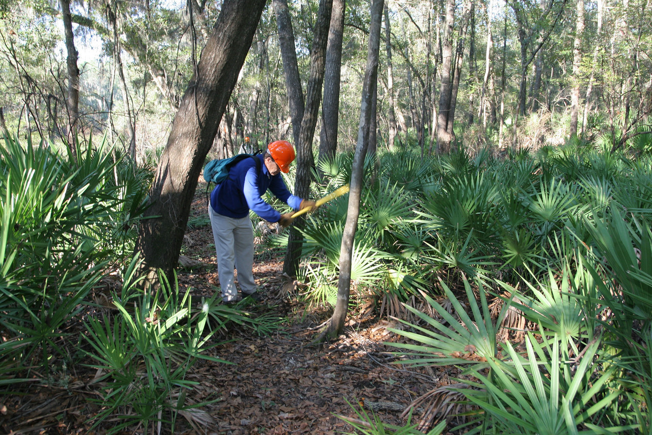 Maintaining the Florida Trail<br /> PHOTO CREDIT: Bob Stone / Florida Trail Association