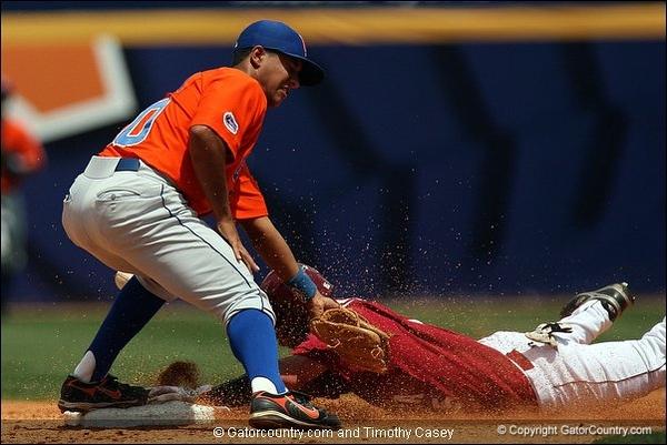 Gator Baseball 2008