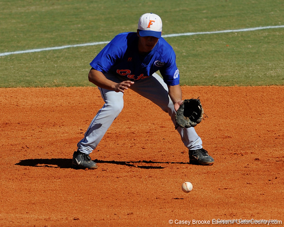 Florida junior Jandy Rosabal fields a ground ball during the University of Florida Orange and Blue scrimmage game in Gainesville, Fla on November 8, 2008. (Casey Brooke Lawson / Gator Country)