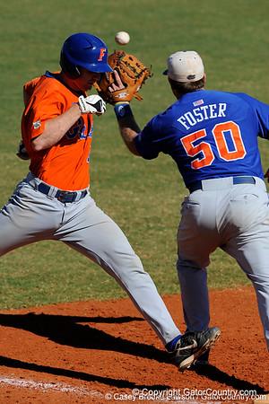 Gator Baseball 2009