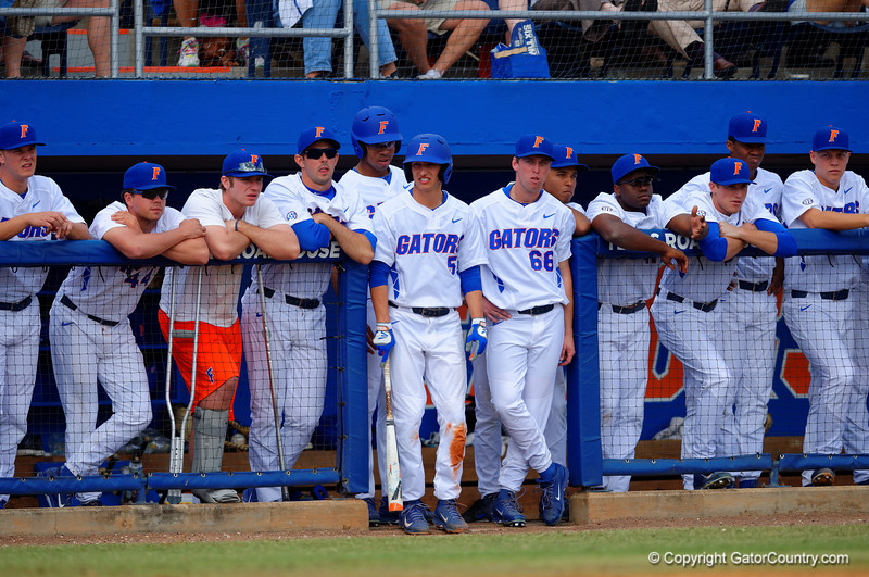 The Florida Gators watch on from the dug out during the third inning.  Florida Gators vs Miami Hurricanes.  February 22nd, 2015. Gator Country photo by David Bowie.