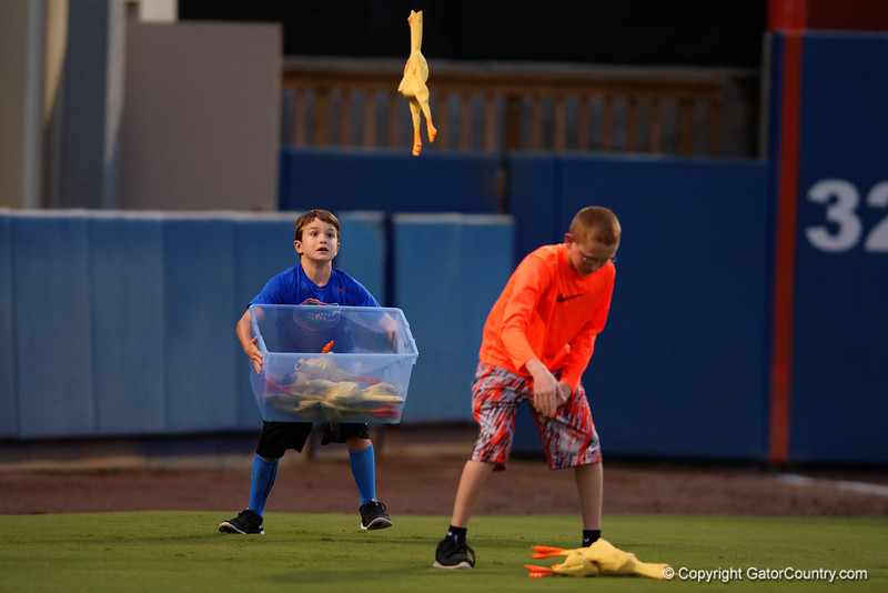 Two young Gator fans win a gift certificate for Chik-Fil-A for throwing and catching rubber chickens during Thursday nights Gators loss to the Auburn Tigers 4-1.  May 14th, 2015. Gator Country photo by David Bowie.