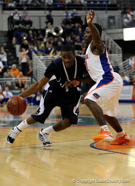 (Casey Brooke Lawson / Gator Country) UF guard Erving Walker guards a Longwood player during the first half of the Gators games against Lancers in Gainesville, Fla., on January 6, 2009.