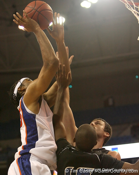 photo by Tim Casey<br /> <br /> Florida sophomore forward Alex Tyus gets fouled during the second half of the Gators' 108-49 win in an exhibition game against the Warner Southern Royals on Monday, November 3, 2008 at the Stephen C. O'Connell Center in Gainesville, Fla.