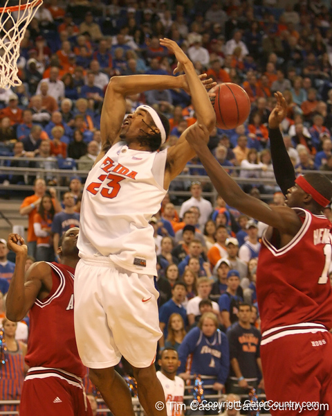 photo by Tim Casey<br /> <br /> Florida sophomore forward Alex Tyus has the ball stripped from him during first half of the Gators' 80-65 win against the Arkansas Razorback on Saturday, January 17, 2009 at the Stephen C. O'Connell Center in Gainesville, Fla.