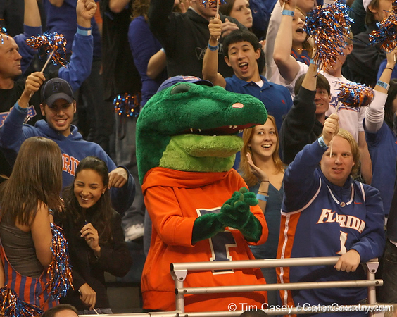photo by Tim Casey<br /> <br /> Albert cheers from the stands during first half of the Gators' 80-65 win against the Arkansas Razorbacks on Saturday, January 17, 2009 at the Stephen C. O'Connell Center in Gainesville, Fla.