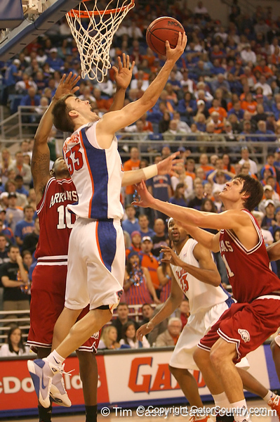 photo by Tim Casey<br /> <br /> Florida sophomore guard/forward Nick Calathes scores on a layup after grabbing an offensive rebound during first half of the Gators' 80-65 win against the Arkansas Razorbacks on Saturday, January 17, 2009 at the Stephen C. O'Connell Center in Gainesville, Fla.