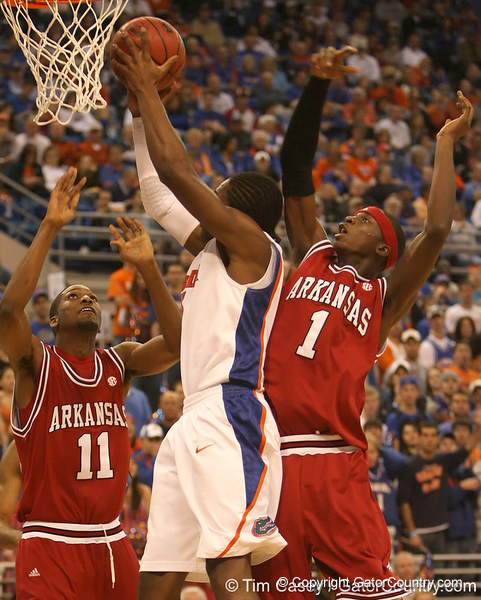 photo by Tim Casey<br /> <br /> Florida freshman guard/forward Ray Shipman shoots a layup during first half of the Gators' 80-65 win against the Arkansas Razorback on Saturday, January 17, 2009 at the Stephen C. O'Connell Center in Gainesville, Fla.