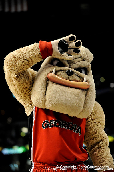 The Georgia mascot waves to the crowd during the Mississippi Bulldogs 79-60 victory over the University of Georgia Bulldogs on Thursday, March 12, 2009 in the St. Pete Times Forum. / Gator Country photo by Casey Brooke Lawson