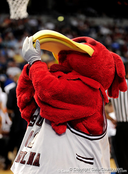 The South Carolina mascot dances during the first half of the Mississippi State Bulldogs game against the South Carolina Gamecocks on Friday, March 13, 2009 in the St. Pete Times Forum. / Gator Country photo by Casey Brooke Lawson