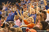 photo by Tim Casey<br /> <br /> Florida fans cheer during the Gators' 75-54 win against the Mississippi Rebels on Sunday, January 25, 2009 at the Stephen C. O'Connell Center in Gainesville, Fla.